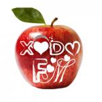Logo da emissora Rádio Xodó
