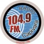 Logo da emissora Rádio Capivara 104.9 FM