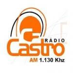 Logo da emissora Rádio Castro 1130 AM