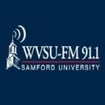 Logo da emissora WVSU 91.1 FM