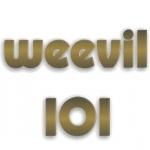 Logo da emissora WVVL 101.1 FM