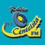 Logo da emissora Rádio Cenecista 89.9 FM