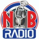Logo da emissora Rádio Nova Barreiros