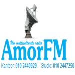 Logo da emissora Amor 105.4 FM