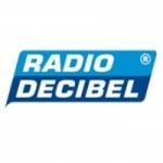 Logo da emissora Decibel 105.9 FM
