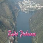 Logo da emissora Radio Pinhoense