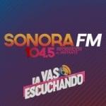 Logo da emissora Radio Cadena Sonora 104.5 FM
