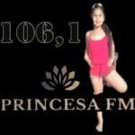 Logo da emissora Rádio Princesa Do Jari