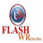 Logo da emissora Rádio Flash FM