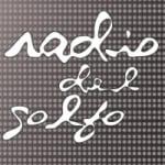 Logo da emissora Del Golfo 93.9 FM