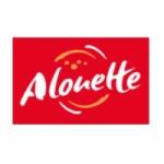 Logo da emissora Alouette 92.8 FM