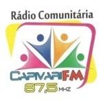 Logo da emissora Rádio Comunitária Capivari 87.5 FM