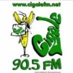 Logo da emissora Cigale 90.5 FM