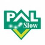 Logo da emissora Radio Pal Slow