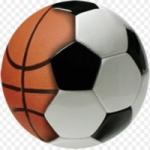Logo da emissora Web Sport Rádio