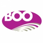 Logo da emissora Radio Boo 105.1 FM