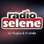 Logo da emissora Selene 96.1 FM