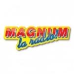 Logo da emissora Magnum La Radio 99.1 FM
