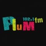 Logo da emissora Plum 102.1 FM