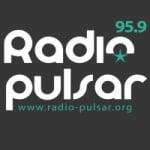 Logo da emissora Pulsar 95.9 FM