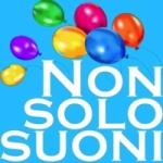 Logo da emissora Radio Non Solo Suoni