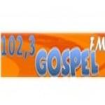 Logo da emissora Rádio Gospel 102.3 FM