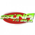 Logo da emissora Rádio Graúna 95.3 FM