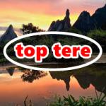 Logo da emissora Top Tere
