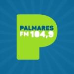 Logo da emissora Rádio Palmares 104.9 FM