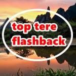 Logo da emissora Top Tere Flashback