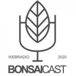 Logo da emissora BonsaiCaast Web Rádio