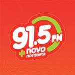Logo da emissora Rádio 91.5 FM
