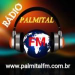 Logo da emissora Rádio Palmital FM