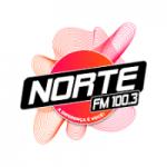 Logo da emissora Rádio Norte FM 100.3