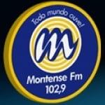 Logo da emissora Rádio Montense 102.9 FM