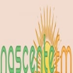 Logo da emissora Rádio Nascente 105.9 FM
