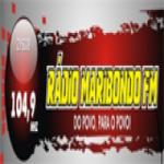 Logo da emissora Rádio Maribondo 104.9 FM
