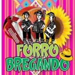 Logo da emissora Rádio Forró Bregando