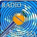 Logo da emissora Rádio Princesa 91.7 FM