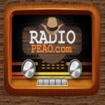 Logo da emissora Rádio Peão Goiás