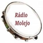 Logo da emissora Rádio Molejo FM