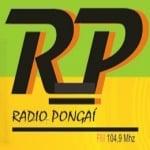 Logo da emissora Rádio Pongaí 104.9 FM