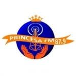 Logo da emissora Rádio Princesa 87.9 FM