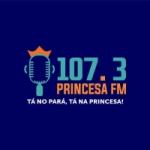 Logo da emissora Rádio Princesa 107.3 FM
