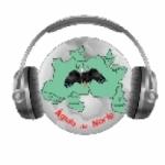 Logo da emissora Rádio Web Águia do Norte