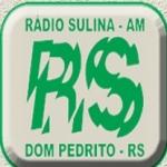 Logo da emissora Rádio Sulina 1530 AM