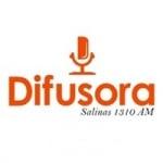 Logo da emissora Rádio Difusora Salinas 1310 AM