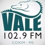 Logo da emissora Rádio Vale 102 FM