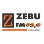 Logo da emissora Rádio Zebu 93.9 FM