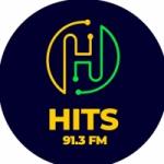 Logo da emissora Rádio 91.3 FM